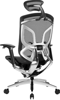 ERGO DVARY GT-chair