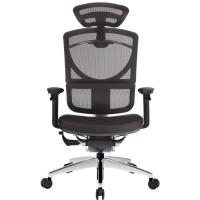 Анатомическое кресло для компьютера GTCHAIR i-SEE XL Подголовник / Soft Pad Seat