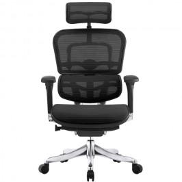 Эргономичное кресло для работы за компьютером ERGOHUMAN Plus сетчатое