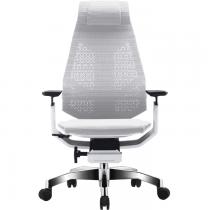 Эргономичное сетчатое компьютерное кресло GeniDia-Mesh White