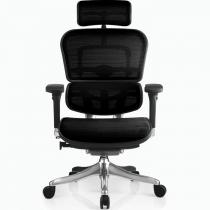 Эргономичное сетчатое компьютерное кресло ERGOHUMAN Plus