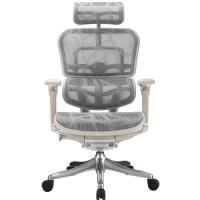 Анатомическое компьютерное дизайнерское кресло ERGOHUMAN Plus LUXURY