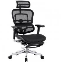 Компьютерное кибер кресло с подставкой для ног Ergohuman Plus Legrest