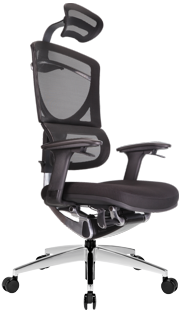 Dvary ERGO SEATING ISEE GTCHAIR сетчатое кресло