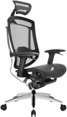 Dvary ERGO SEATING MARRIT GTCHAIR сетчатое кресло