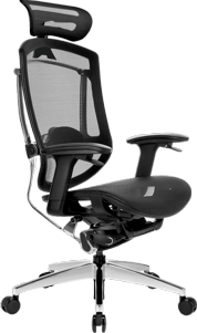Dvary ERGO SEATING MARRIT GT CHAIR