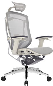 DVARY ERGO SEATING MARRIT GTCHAIR